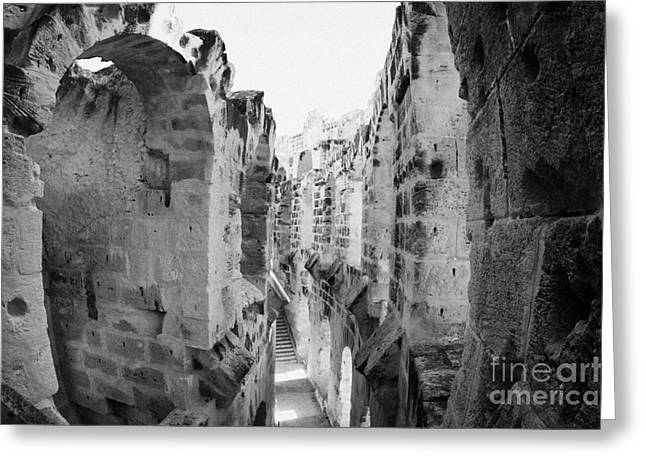 African Heritage Greeting Cards - Looking Down On Internal Walkways From Upper Tier Of Old Roman Colloseum El Jem Tunisia Greeting Card by Joe Fox