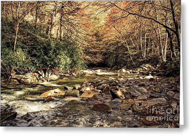Babbling Greeting Cards - Looking Down Stream Greeting Card by Tom Gari Gallery-Three-Photography