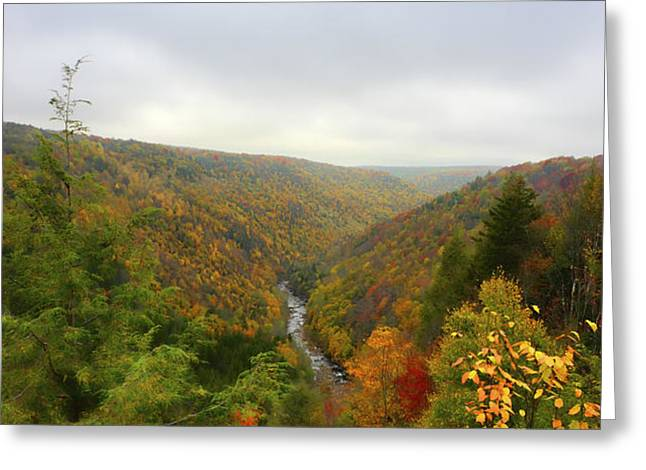 Looking downstream at Blackwater River Gorge in fall Greeting Card by Dan Friend