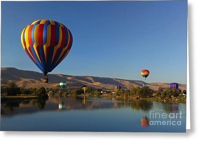 Yakima River Greeting Cards - Looking for a Place to Land Greeting Card by Mike  Dawson