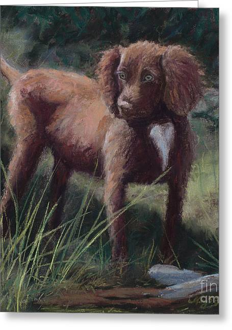 Doggy Pastels Greeting Cards - Looking for Adventure Greeting Card by Mary Benke
