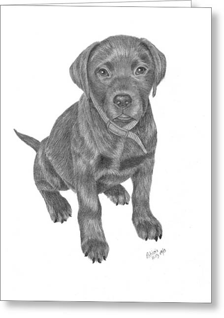 Chocolate Lab Greeting Cards - Looking for Dinner Greeting Card by Patricia Hiltz