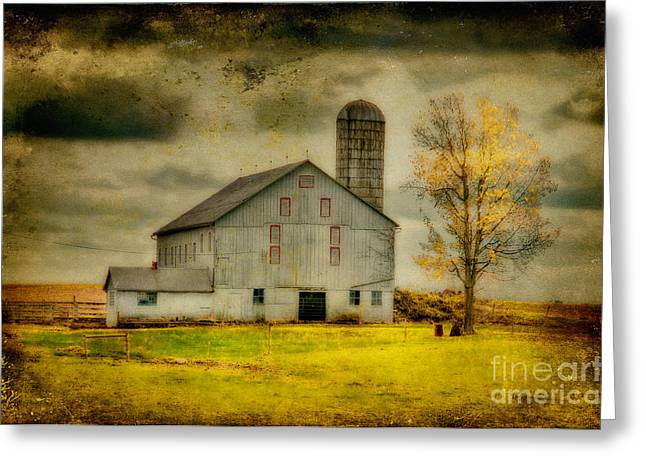Old Barns Greeting Cards - Looking For Dorothy Greeting Card by Lois Bryan