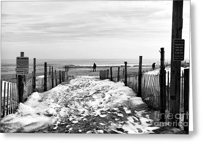 Looking For Treasures Mono Greeting Card by John Rizzuto