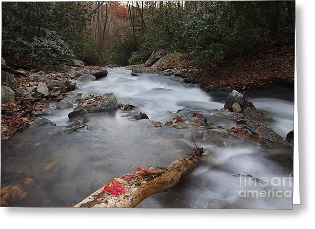 Jonathan Welch Greeting Cards - Looking Glass Creek Greeting Card by Jonathan Welch