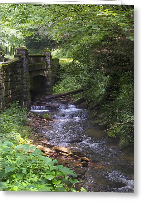 Moss-covered Greeting Cards - Looking Glass Creek - North Carolina Greeting Card by Mike McGlothlen
