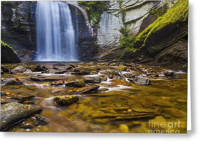 Nc Fine Art Greeting Cards - Looking Glass Falls Greeting Card by Anthony Heflin