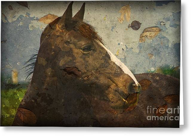 Caballo. Fence Greeting Cards - Looking I Fall For You Greeting Card by J M Lister