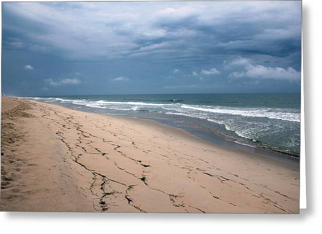 Carolyn Stagger Cokley Greeting Cards - Looking North Greeting Card by Carolyn Stagger Cokley