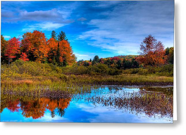 Fall Folage Greeting Cards - Looking North on the Green Bridge Greeting Card by David Patterson