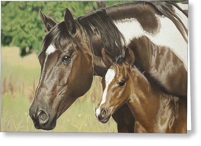 Quarter Horses Drawings Greeting Cards - Looking Out For Me Greeting Card by Helen Bailey