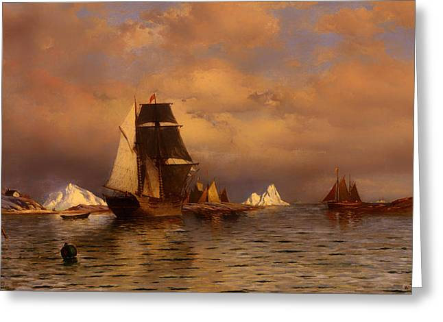 Tall Ships On Water Greeting Cards - Looking Out of Battle Harbor Greeting Card by William Bradford