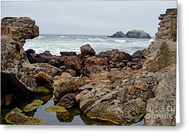 Looking Out On The Pacific Ocean From The Sutro Bath Ruins In San Francisco IIi Greeting Card by Jim Fitzpatrick