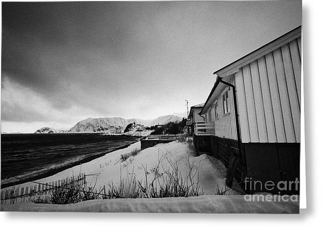 Scandanavian Greeting Cards - looking out over seafront houses to the barents sea Honningsvag finnmark norway europe Greeting Card by Joe Fox