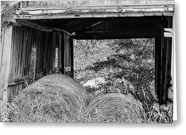 Old Barns Greeting Cards - Looking Through the Hay Barn Greeting Card by Terri Morris
