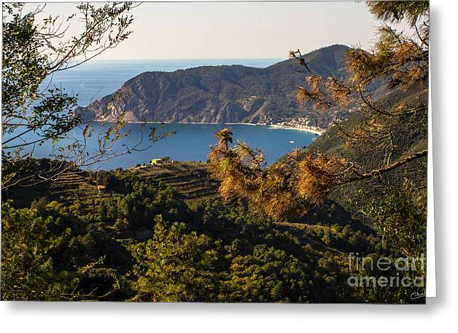 Monterosso Greeting Cards - Looking to Monterosso al Mare Greeting Card by Prints of Italy