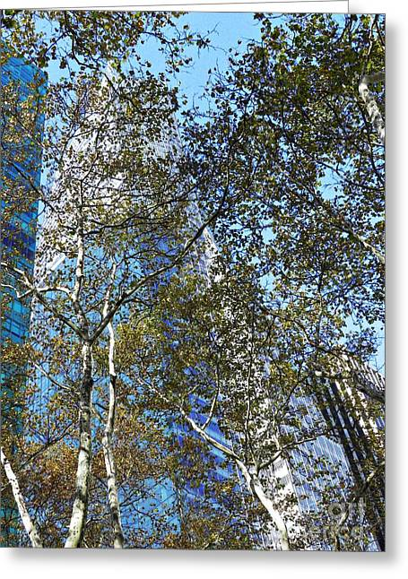 Bryant Park Photographs Greeting Cards - Looking Up from Bryant Park in Autumn Greeting Card by Sarah Loft