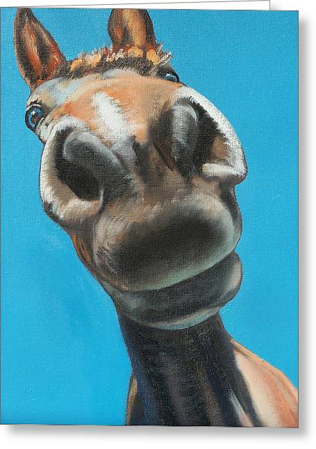 Equestrian Commissions Greeting Cards - Looking up  Greeting Card by Steve Messenger