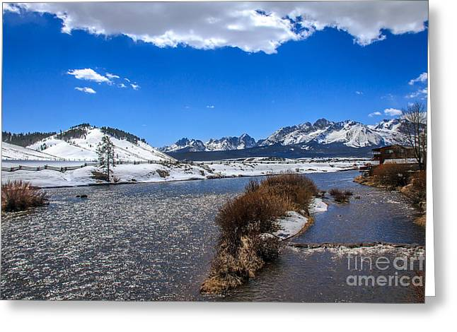 Salmon River Idaho Greeting Cards - Looking Up The Salmon River Greeting Card by Robert Bales