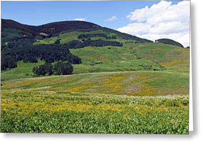 Crested Butte Greeting Cards - Looking West From Gothic Road Greeting Card by Panoramic Images