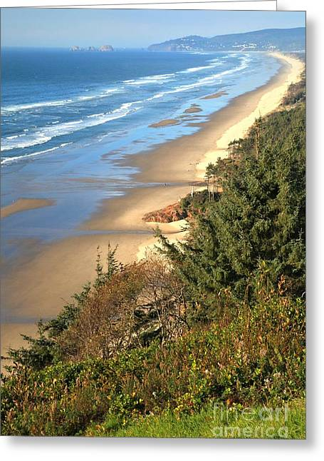 Cape Lookout Greeting Cards - Lookout Over The Cape Greeting Card by Adam Jewell