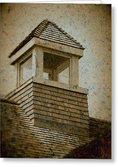 Wb Johnston Greeting Cards - Lookout Greeting Card by WB Johnston
