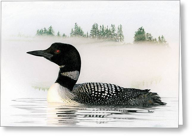 Aquatic Bird Greeting Cards - Loon in Fog Greeting Card by Brent Ander