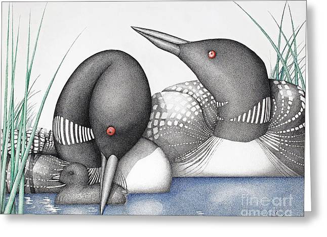 Baby Bird Drawings Greeting Cards - Loons Greeting Card by Wayne Hardee