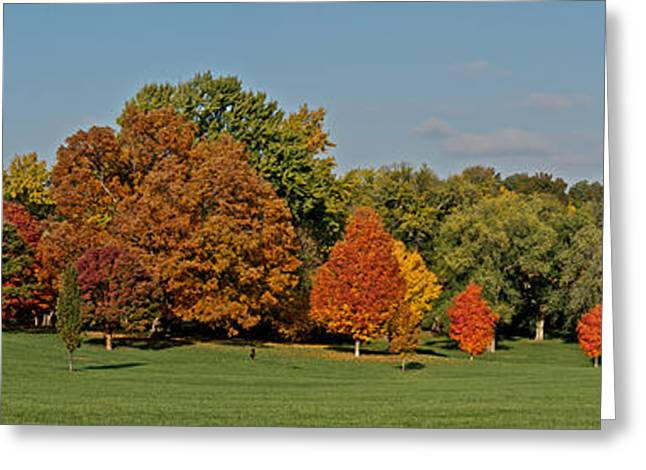Loose Greeting Cards - Loose Park - Kansas City- Fall 2013 Greeting Card by Devin Botkins