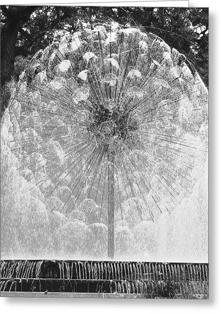 Loring Fountain Black-and-white Greeting Card by Rashelle Brown