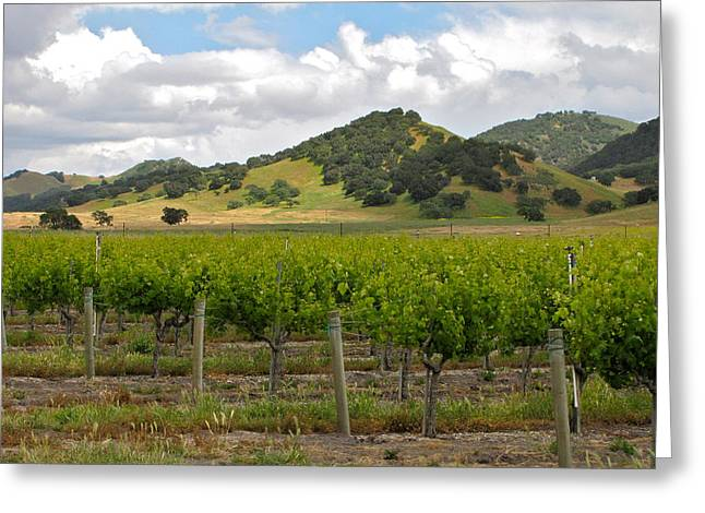 Wine Tour Greeting Cards - Los Alamos California Greeting Card by Ray R Morawski