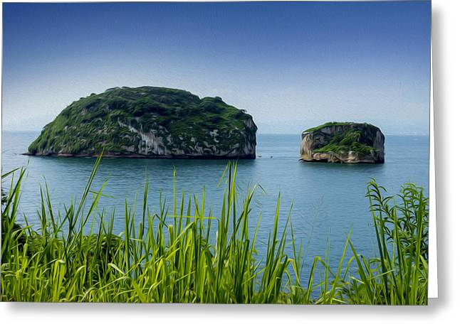 Snorkeling Greeting Cards - Los Arcos Puerto Vallarta Mexico Greeting Card by Aged Pixel