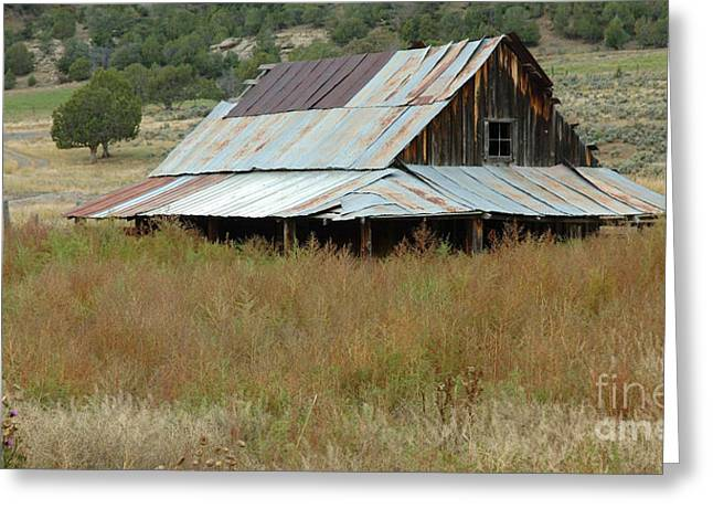 Barn Landscape Photographs Greeting Cards - Lost Along the Way Greeting Card by Jerry McElroy