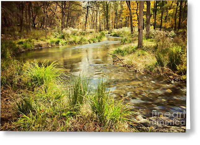 Beavers Bend Park Greeting Cards - Lost Creek in Autumn Morning Greeting Card by Iris Greenwell