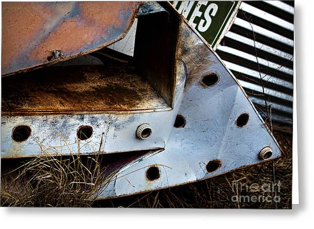 Rusty Metal Greeting Cards - Lost Greeting Card by Elena Nosyreva
