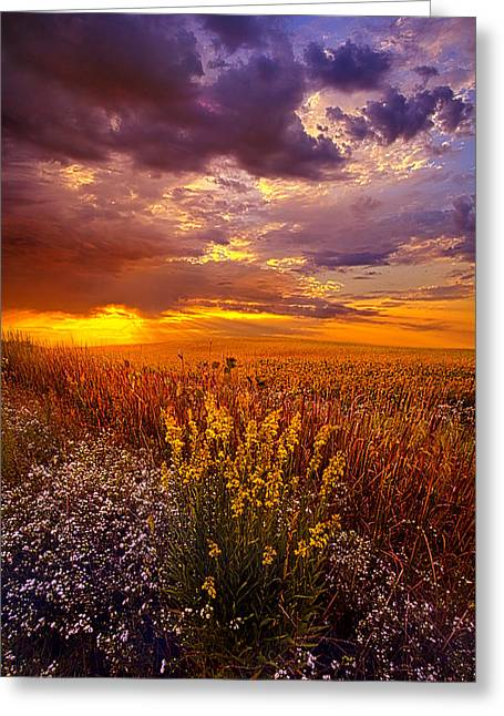 Bluesky Greeting Cards - Lost In A Dream Greeting Card by Phil Koch