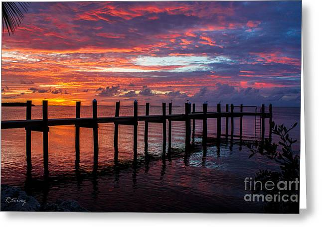 Isla Morada Greeting Cards - Lost in a Tropical Island Dream Greeting Card by Rene Triay Photography