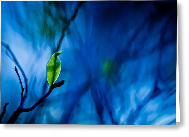 Blue And Green Digital Art Greeting Cards - Lost in Blue Greeting Card by Linda Unger