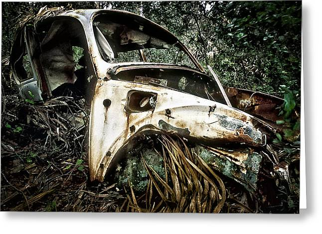 Rusted Cars Greeting Cards - Lost In The Woods Greeting Card by Patrick M Lynch