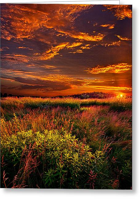 Shadows Greeting Cards - Lost In The World Greeting Card by Phil Koch