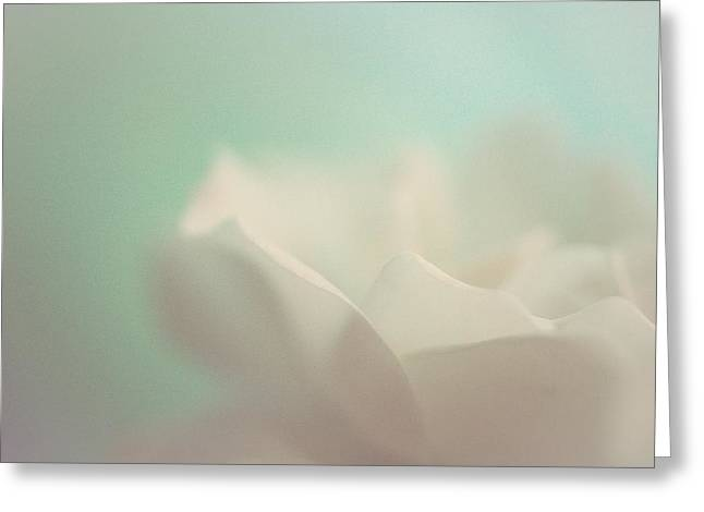 White Roses Greeting Cards - Lost in Time Greeting Card by  The Art Of Marilyn Ridoutt-Greene