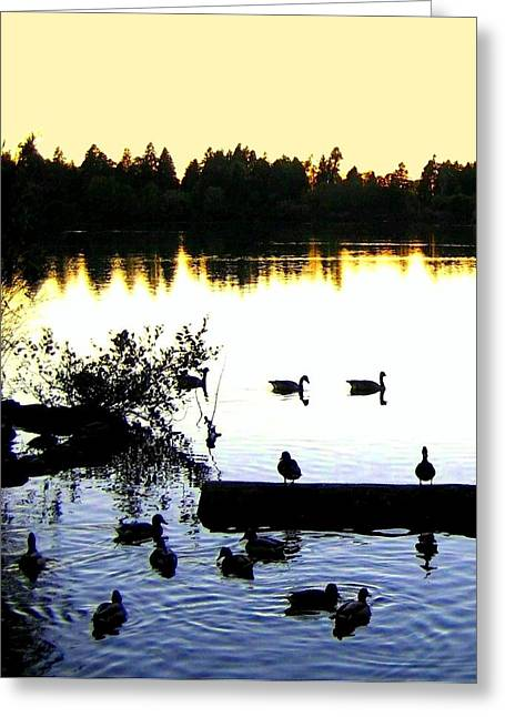Peaceful Tree At Sunset Greeting Cards - Lost Lagoon At Sundown Greeting Card by Will Borden