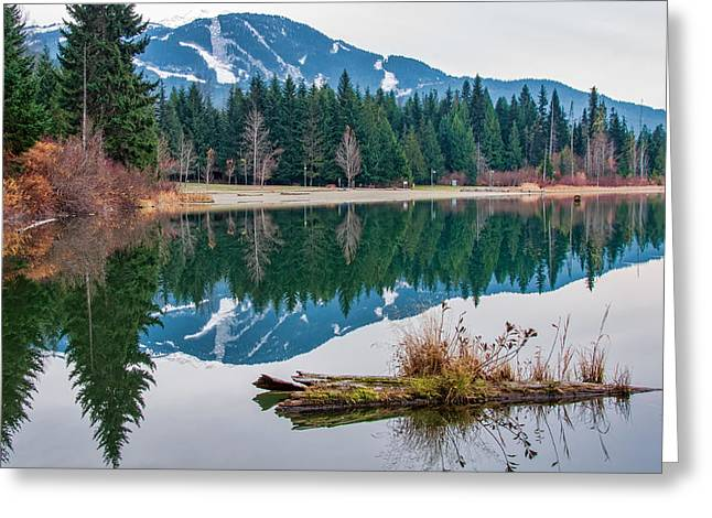 Mountain Reflection Lake Summit Mirror Greeting Cards - Lost Lake Log Greeting Card by James Wheeler