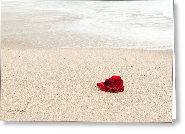 Beach Roses Greeting Cards - Lost Love Greeting Card by Michelle Wiarda