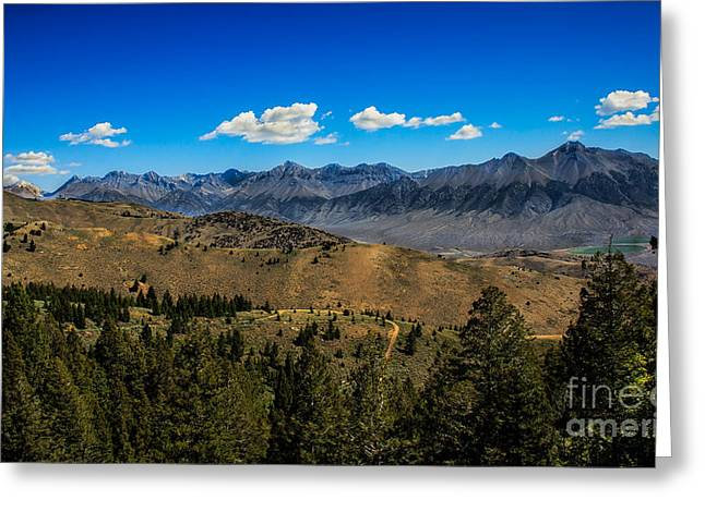 Usa Hikes Greeting Cards - Lost River Mountains Greeting Card by Robert Bales