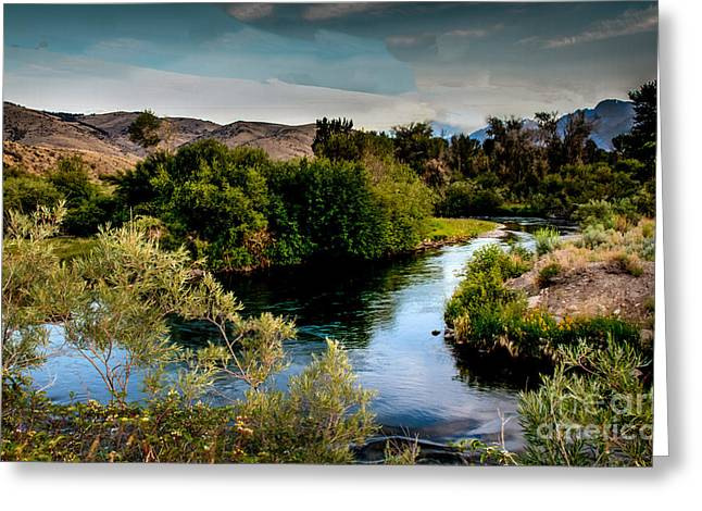 Trappers Greeting Cards - Lost River Greeting Card by Robert Bales