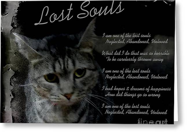 Shelter Kitty Greeting Cards - Lost Souls Greeting Card by Renee Trenholm
