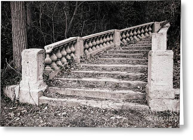 Wood Castle Greeting Cards - Lost Staircase Greeting Card by Olivier Le Queinec