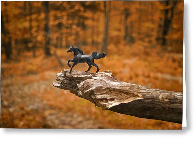 Imagined Realism Greeting Cards - Lost Toy In The Woods Greeting Card by Jeff  Gettis