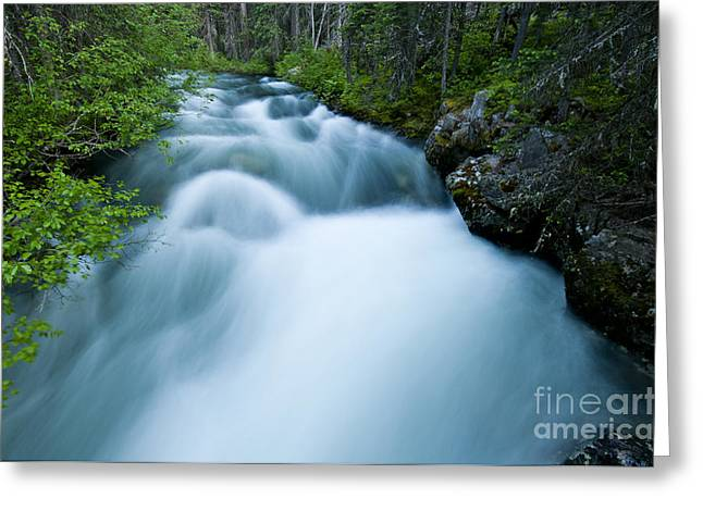 Water Flowing Greeting Cards - Lostine River Greeting Card by William H. Mullins